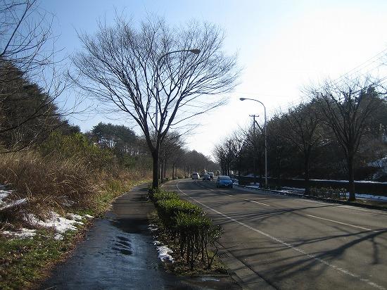 2010歩き納め。 030.jpg