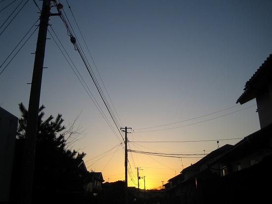 朝日―今日はジャングルジャングル。 023.jpg