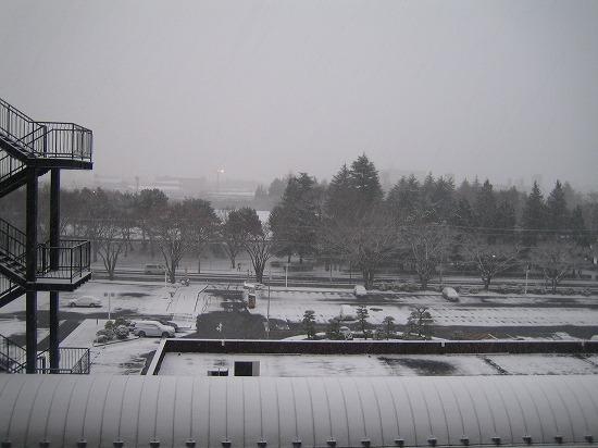 <退院>ホワイト・クリスマス 013.jpg